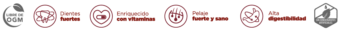 Diseño grafico iconos iconografia ilustraciones brandesign para producto