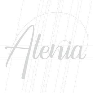 Ejemplos casos proyectos de diseño de marcas branding marca ropa españa alenia