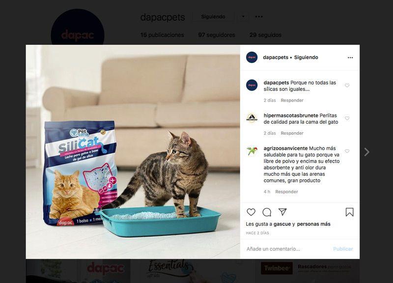 produccion de creatividades y branded content en instagram para tu marca