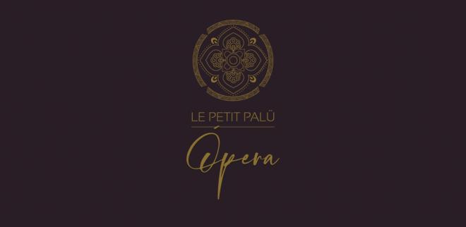 Diseño de la identidad corporativa de los hoteles Le Petit Palú